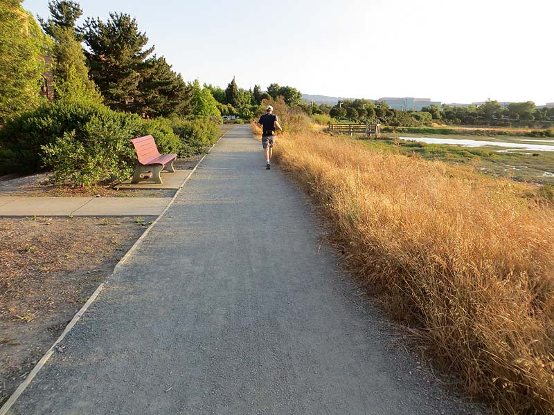 Bike Marine Drive Trail Access The gravel trail ends at the