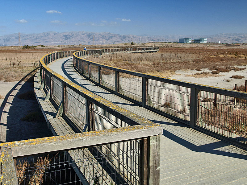 Sunnyvale Baylands, viewing platform, 2011